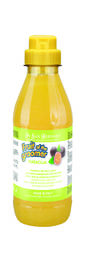 Winner.Dog Iv San Bernard Fruit of the Groomer Shampoo Maracuja 500ml